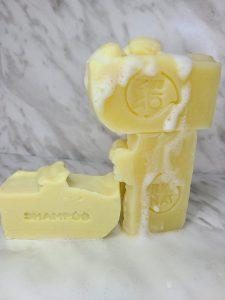 Barra de Shampoo 100 gramos